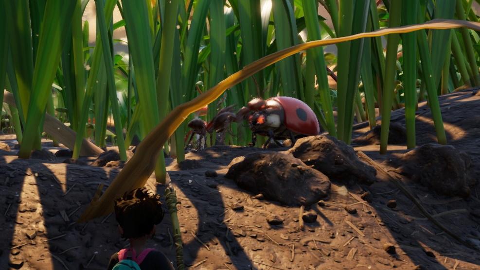 Una hormiga y una mariquita se enfrentan en la hierba.